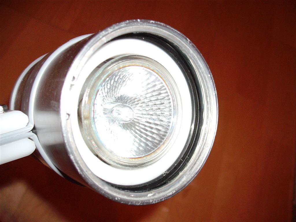 DSCF7090 (Large)